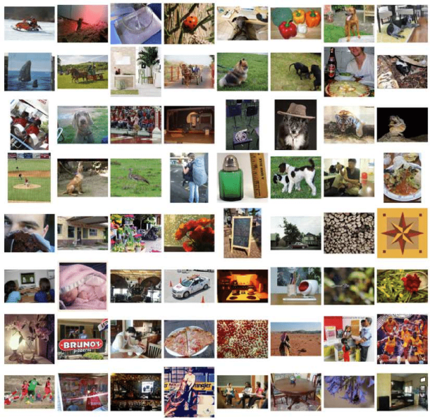 Examples-in-the-ImageNet-dataset