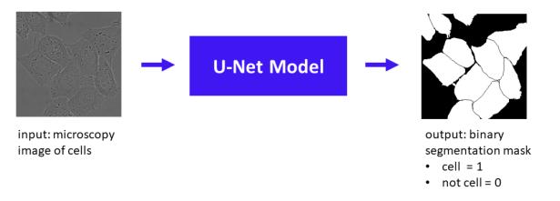 u-net-schematic