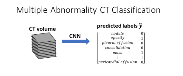 multiple-abn-ct-classification