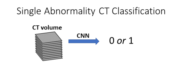 single-abn-ct-classification